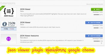 json viewer plugin ดูโครงสร้างไฟล์ json สุดเจ๋งบน google chrome