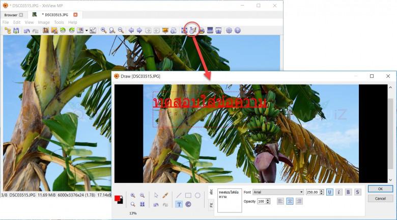 โปแกรมดูรูปฟ XnView
