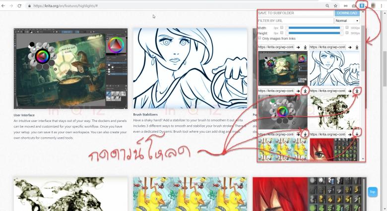 save รูปภาพบนเว็บไซต์ที่ห้ามคลิกขวา ด้วย image downloader ใน chrome
