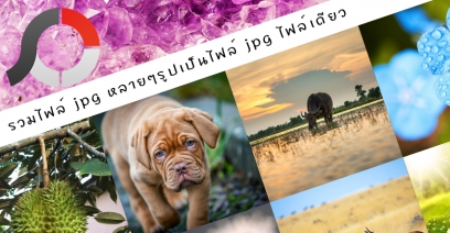 รวมไฟล์ jpg หลายๆรูปเป็นไฟล์ jpg ไฟล์เดียวด้วย PhotoScape X