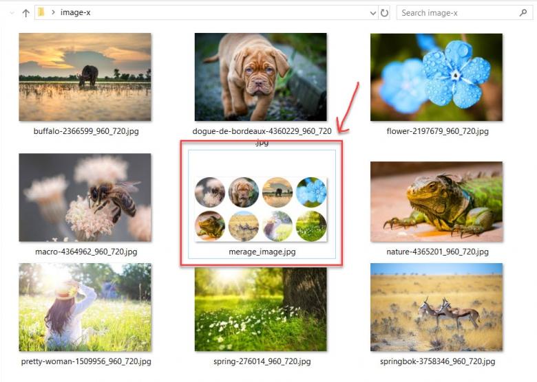 รวมไฟล์รูปหลายๆรูปเป็นไฟล์เดียว