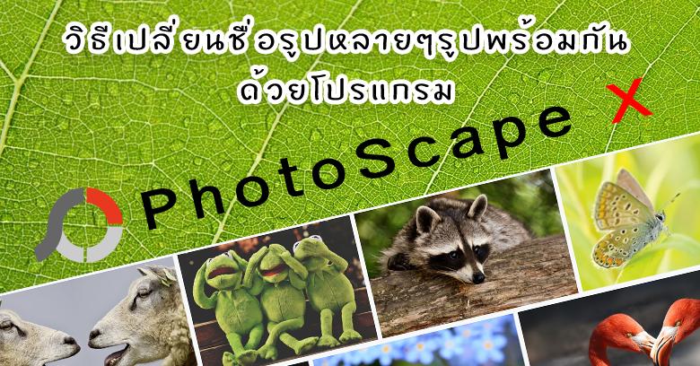 วิธีเปลี่ยนชื่อรูปหลายๆรูปพร้อมกันด้วยโปรแกรม PhotoScape X