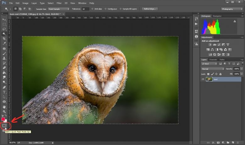 ขั้นตอนใช้ Mask Mode ลบภาพพื้นหลังใน Photoshop