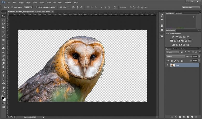 ลบภาพพื้นหลังใน Photoshop