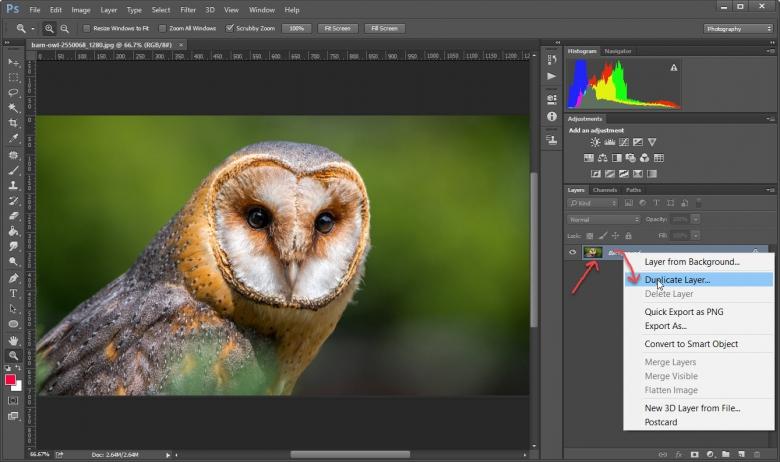 การก็อปปี้ Layer ใน Photoshop