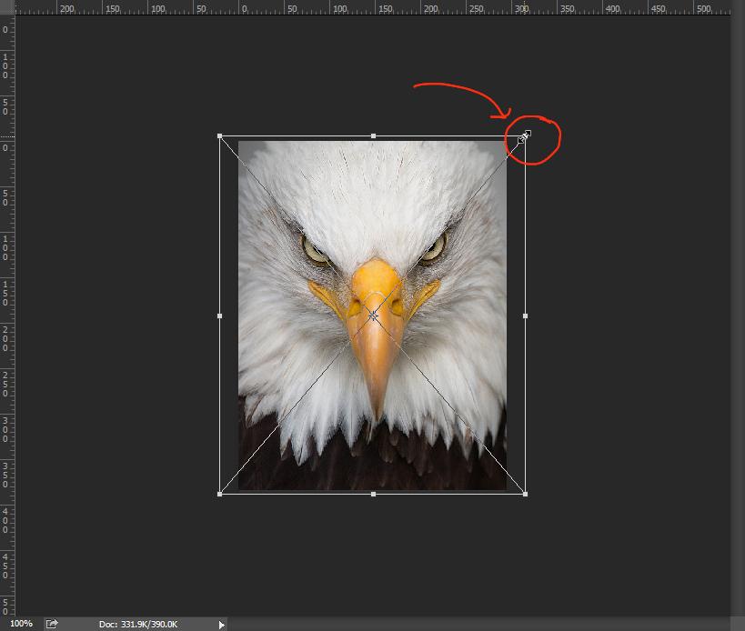 ย่อขยายรูปใน Photoshop