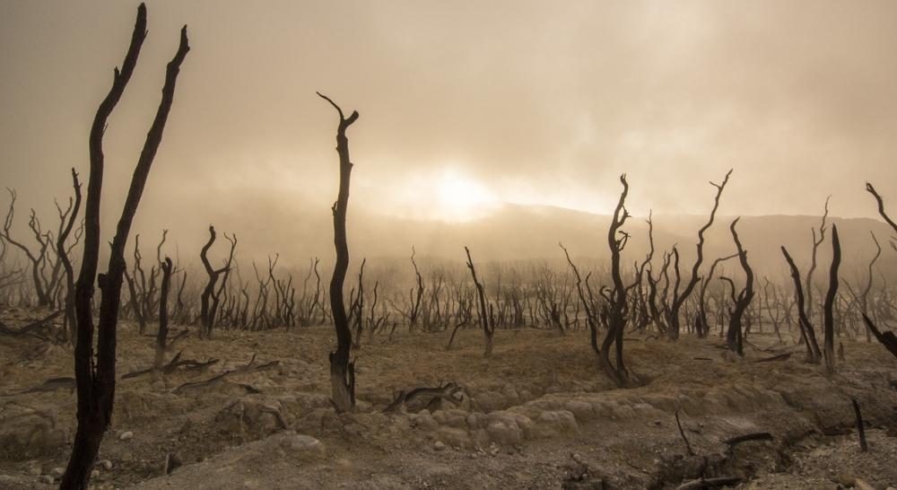 ธรรมชาติถูกทำลาย